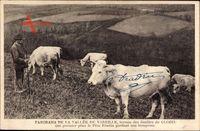 Panorama de la Vallée du Vareille, Glozel, Vaches, Kühe, Hirte