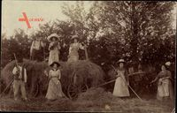 Landwirtschaft, Strohernte, Bäuerinnen, Pferdekarren