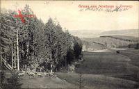 Neuhaus am Rennweg Thüringen, Rehe, Blick in die Landschaft, Wald