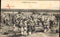 El Mérada Marokko, LAbattoir, Schlachthof, Marokkaner