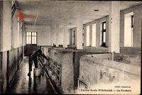Ferme École Pittsburgh, La Porcherie, Schweinestall, Landwirt