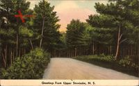 Upper Stewiacke Nova Scotia, Woods, Waldweg, Bäume